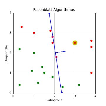 Rosenblatt-Algorithmus