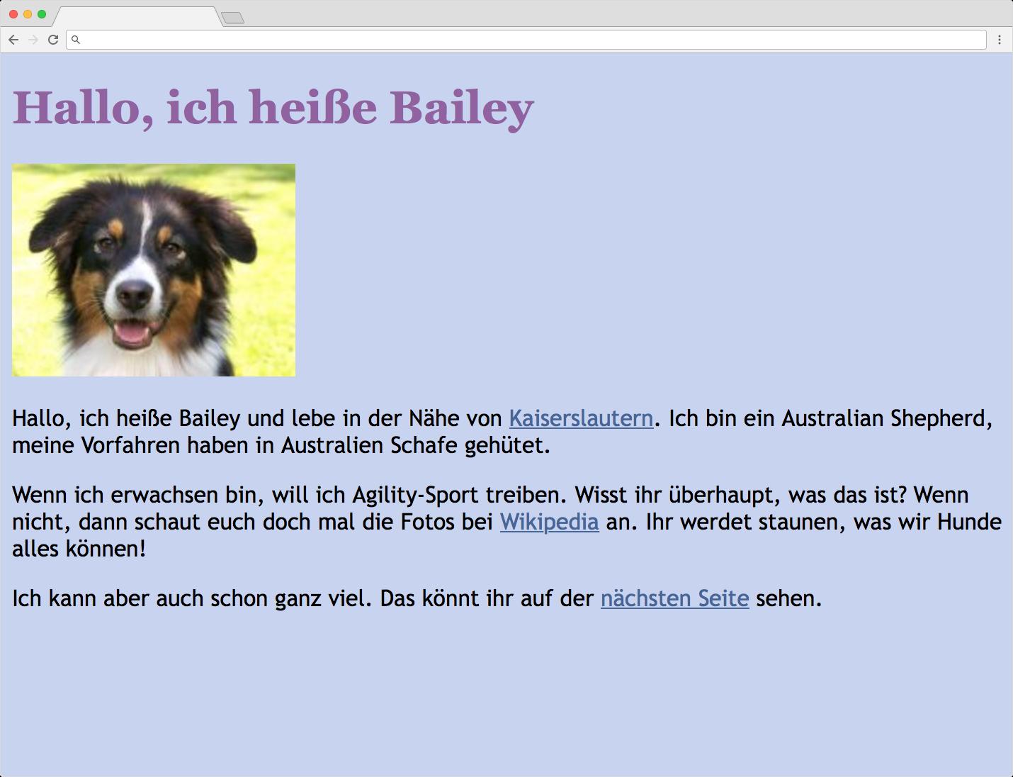 Webseite bailey1