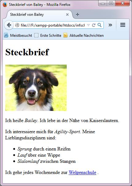 Webseite mit Steckbrief