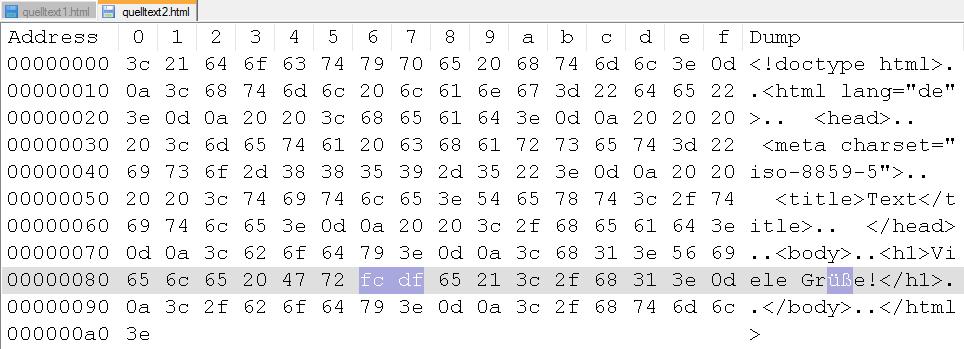Hexeditor Datei 2 (in Notepad++)
