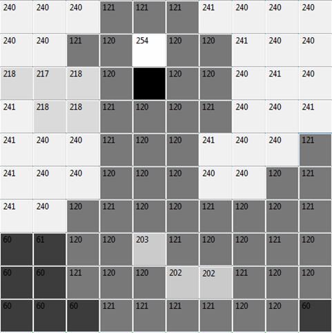 Ente Schwarz-Weiß 3