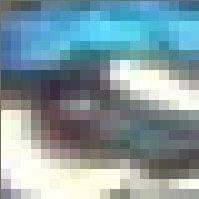 Foto eines Pfaus stark vergrößert