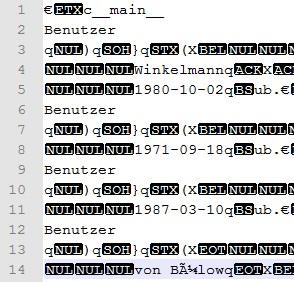 Binäre Datei