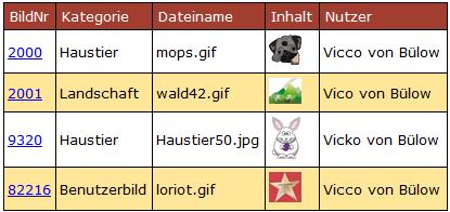 Tabelle, die bei der Suche nach %Bülow gefunden werden - vier Datensätze
