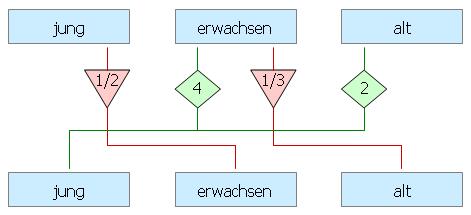 Übersicht mit Fortpflanzungsmodell
